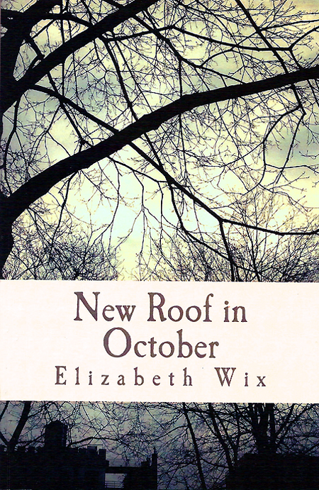 New Roof in October by Elizabeth Wix, low res